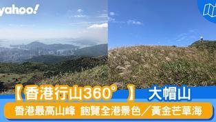 【行山路線】360°大帽山:香港最高山峰 飽覽全港景色/黃金芒草海