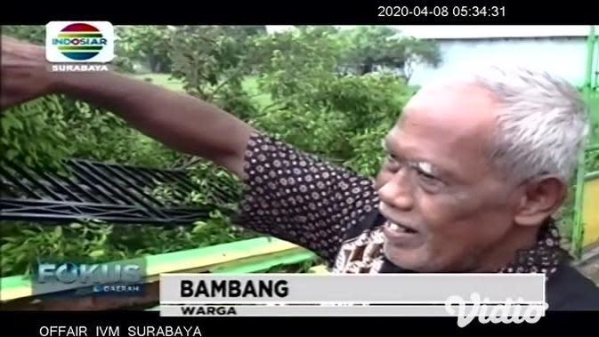 VIDEO: Angin Kencang Bikin Pohon Tumbang di SDN Jombang IV