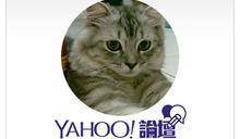【Yahoo論壇/林青弘】阿扁簽書會背叛轉型正義