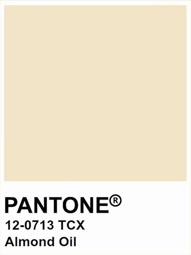 Pantone A/W 2020/2021 Almond Oil
