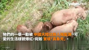 Yahoo精選暖新聞(7/19-7/25):騎車50萬里尋失蹤兒 老父盼24年一家終團圓