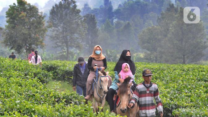 Warga berkuda saat berkeliling kebun teh di pinggir jalan raya yang menghubungkan Bogor-Cianjur di kawasan Gunung Mas, Puncak, Jawa Barat, Minggu (17/5). Kegiatan ngabuburit atau menunggu waktu berbuka puasa ini melanggar aturan PSBB karena mengundang kerumunan massa. (merdeka.com/Arie Basuki)