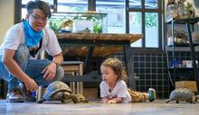 Janet出動兒子為動物發聲 母子倆照顧象龜反被同化