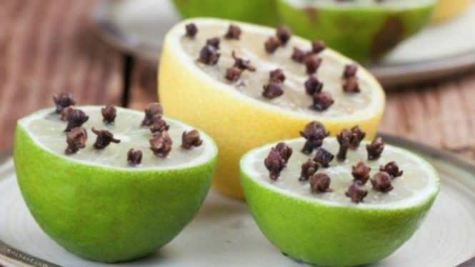 Masukkan Cengkih ke Dalam Lemon, Nyamuk Hingga Lalat Hilang Selamanya