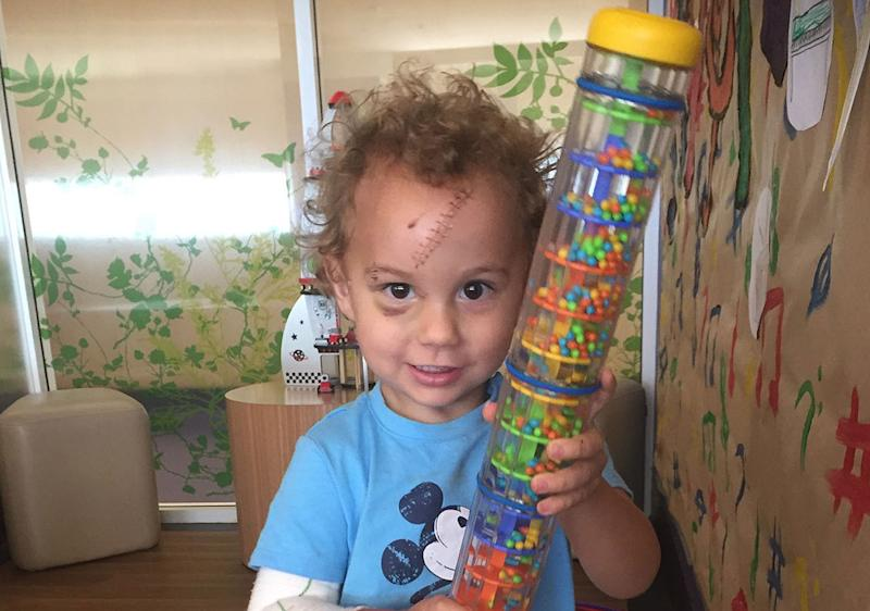 Logan Grieve, 2, was playing in the backyard of his family home in Katherine, Northern Territory, when he was mauled by his family's Bull Mastiff cross. Source: Supplied/ Shannon Coutts
