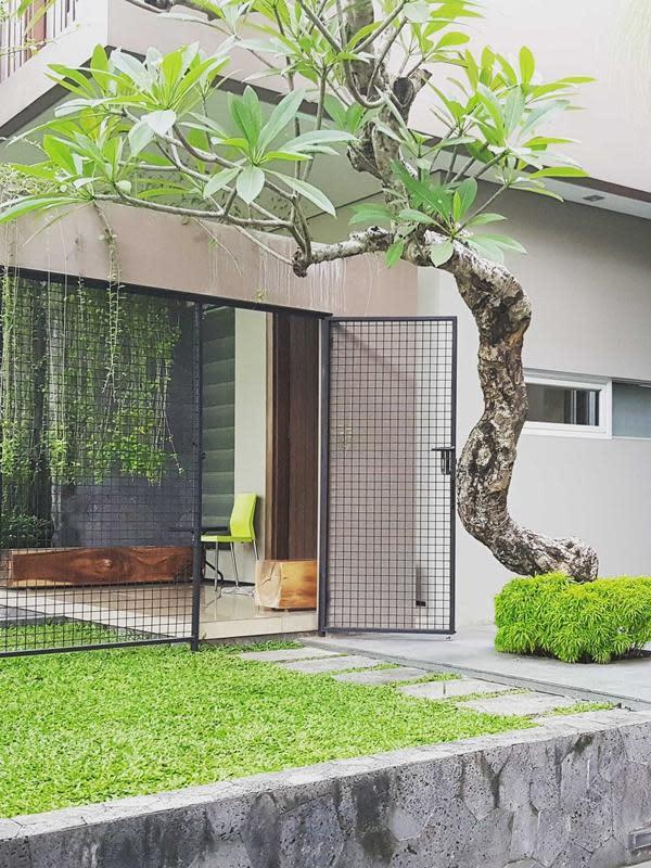 Pohon tunggal di taman minimalis. (dok. Arsitag.com)
