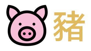 【屬豬】年頭年尾運勢旺 天狗影響當心受傷血光