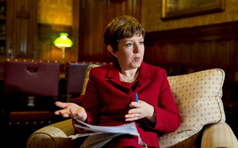 Baroness Stowell of Beeston, the chairwoman of the Charity Commission, has said voluntary organisations had to recognise they did not have right to state support - David Rose