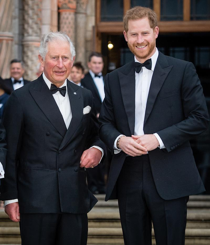 Prince Harry is said to be worried for his father and grandmother amid COVID-19.(Photo by Samir Hussein/Samir Hussein/WireImage)