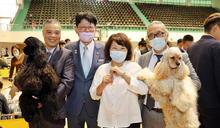 KCT國際畜犬本部展 毛孩萌樣好療癒