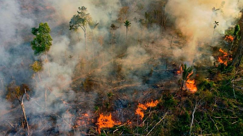 Smoke and flames rise from an illegally lit fire in an Amazon rainforest reserve, south of Novo Progresso in Para state, Brazil