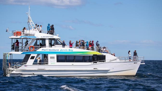 Para wisatawan naik kapal pesiar untuk melihat paus di Teluk Jervis, Sydney selatan, Australia, pada 23 September 2020. (Xinhua/Bai Xuefei)