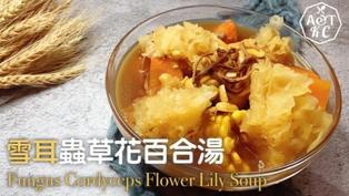 【湯水食譜】 雪耳蟲草花百合湯