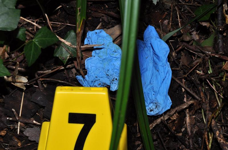 A pair of blue surgical gloves found at Tanner's Brook, Southampton, close to where Ms McHugh's body was found (HAMPSHIRE CONSTABULARY)
