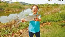 漁權會倡議 把虱目魚變台南市魚
