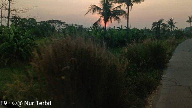 TPU Sudiang Kota Makassar Penuh, Warga Bingung Ngubur Jenazah