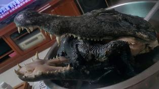 老饕開箱料理包!網見「鱷魚頭」燉湯秒臉綠:這是恐龍嗎