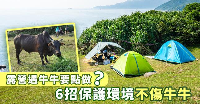 https://hk.news.yahoo.com/%E8%A5%BF%E9%A0%81%E5%A1%94%E9%96%80%E7%89%9B%E9%81%87%E8%A6%8B%E7%89%9B%E8%A6%81%E9%BB%9E%E5%81%9A-031936973.html
