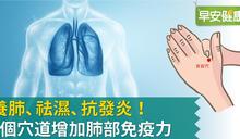 從平日保健開始養好免疫力!中醫師的三個推薦養肺穴道