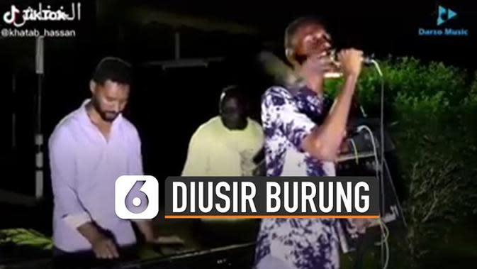 VIDEO: Penyanyi Disambar Burung Berkali-Kali Saat Bermusik