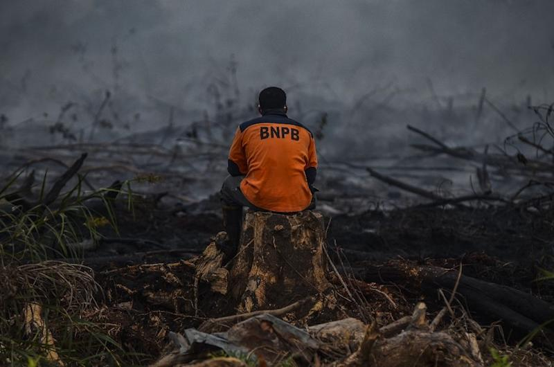 Acrid smoke from illegal burning has covered western and central regions of Indonesia and parts of Malaysia, with thousands of people reporting acute respiratory illness. — AFP pic