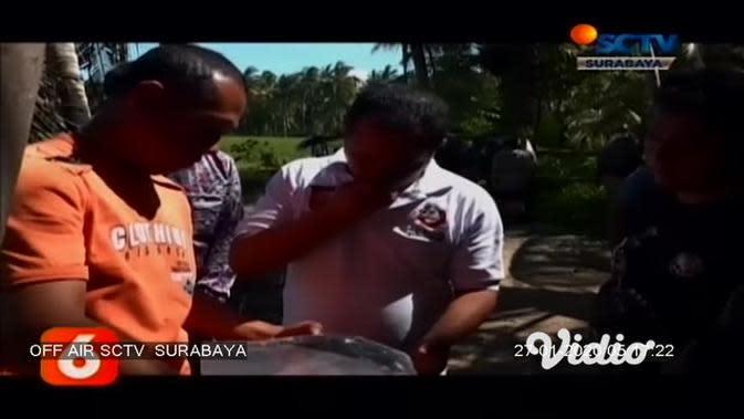 VIDEO: Polisi Selidiki Temuan Mayat Hangus Terbakar di Area Kebun Kelapa Banyuwangi