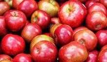 蘋果是癌症剋星!營養師:1種人少吃