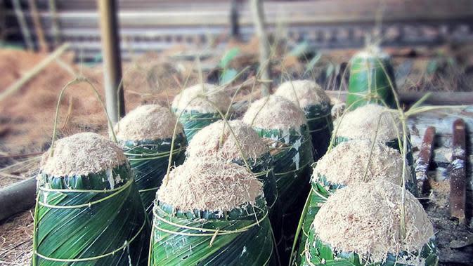 Maksimalkan Diservisifikasi dengan Pangan Lokal, Mentan: Penyuluh Harus Buat Petani Bersemangat