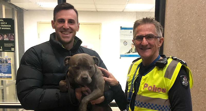 Pictured is Ava, a Staffordshire Bull Terrier, being held by her owner Steve Booth. Also pictured is a Victoria Police officer. Ava was stolen from a front yard in Port Melbourne on Sunday between 12.30pm and 1.15pm. She's since returned to her owner but the thief remains at large.