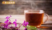 肥胖、疲勞、大小便不暢 擺脫痰濕快喝薏仁氣血茶