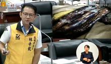 壽山動物園預算過低 議員爆餵食動物「發霉飼料」