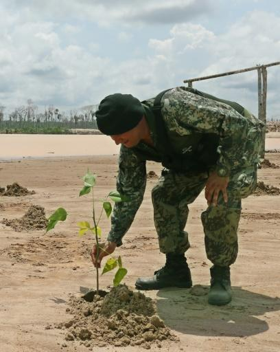 A soldier plants a sapling in the sand at a former illegal mining camp that will now be used as a military base to combat deforestation