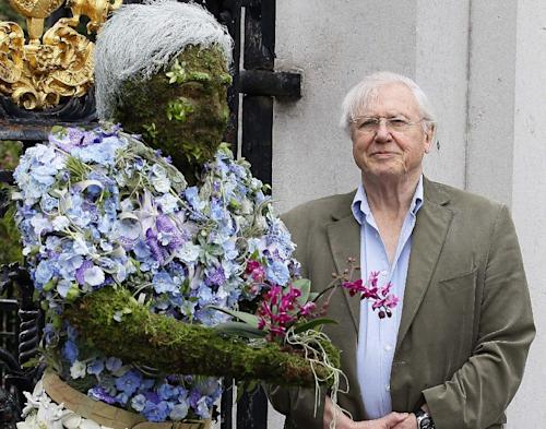 "FILE - In this Thursday, May 17, 2012 file photo British television personality Sir David Attenborough stands with a floral sculpture of himself at Kew Gardens in London. The BBC is hoping to revive a simpler time with ""Tweet of the Day"" _ an early-morning radio program dedicated to British birdsong. Veteran naturalist David Attenborough will host the 90-second show, which begins in May 2013, which will feature the song of a different bird each weekday, along with background on the species' behavior and habits. (AP Photo/Kirsty Wigglesworth, File)"