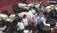 陳其邁首次議會報告 藍營火力全開