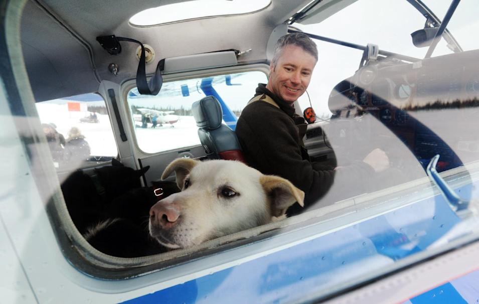 Iditarod Air Force pilot Scott Ivany prepares to take off with a load of dropped dogs in his Cessna 185 during the Iditarod Trail Sled Dog Race, Wednesday, March 6, 2013, at Nikolai Airport in Nikolai, Alaska. (AP Photo/The Anchorage Daily News, Bill Roth)  LOCAL TV OUT (KTUU-TV, KTVA-TV) LOCAL PRINT OUT (THE ANCHORAGE PRESS, THE ALASKA DISPATCH)