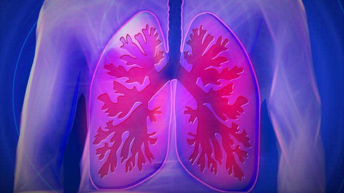 ilustrasi paru-paru. /credit pixabay/kalhh