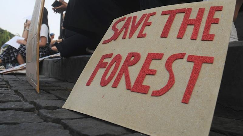 Protest against deforestation in Jakarta
