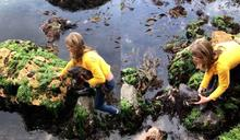 海邊見鯊魚受困,11歲少女「徒手抱起」超淡定!救援影片獲400萬人次觀看