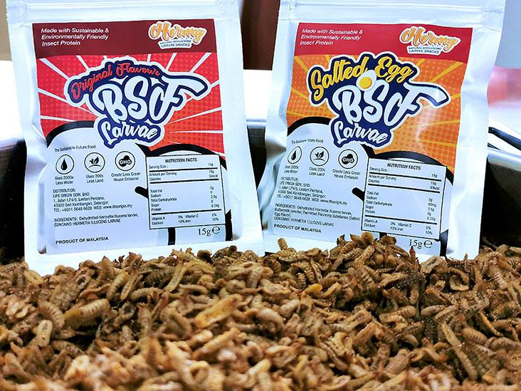 Life Origin recently introduced their Hermy larvae snacks in two flavours – original and salted egg — Pictures courtesy of Life Origin
