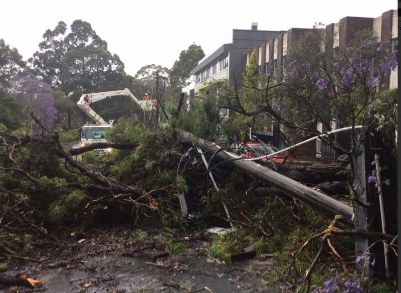 <p>More than 5000 customers across Sydney lost power during the storm. Source: Ausgrid </p>