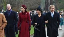 為亡母黛安娜王妃立紀念雕像 哈利威廉兄弟有望重修舊好
