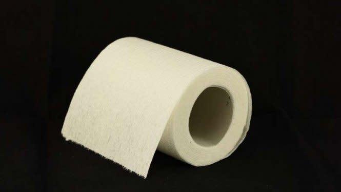 Ini yang Digunakan Manusia Sebelum Ada Tisu Toilet