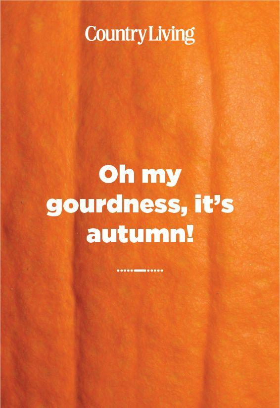 <p>Your autumn-loving friends will appreciate this expression. </p>