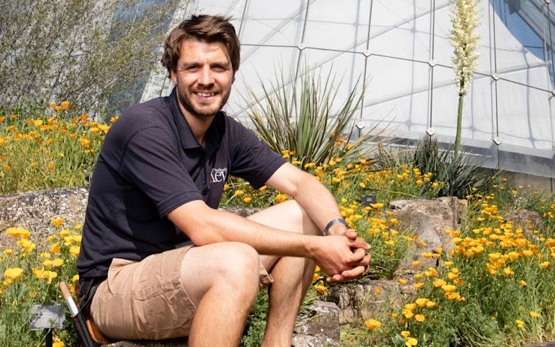 Tom Freeth, 32, curator for the rock and alpine living collection at Kew Gardens, pictured around the rock garden and alpine house - Rii Schroer