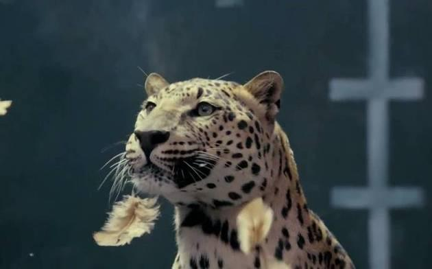 Jaguar spoofs Mercedes with a sacrificial chicken