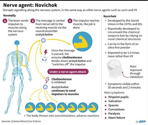 How the Novichok nerge agent affects the body's nervous system