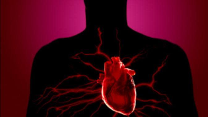 Ilustrasi penyakit jantung. (via: istimewa)