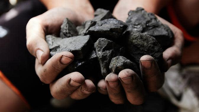 ilustrasi manfaat batu bara dalam kehidupan sehari-hari/Vladyslav Trenikhin/shutterstock