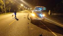 牛隻深夜跑上公路 花蓮瑞穗發生撞牛車禍(1) (圖)