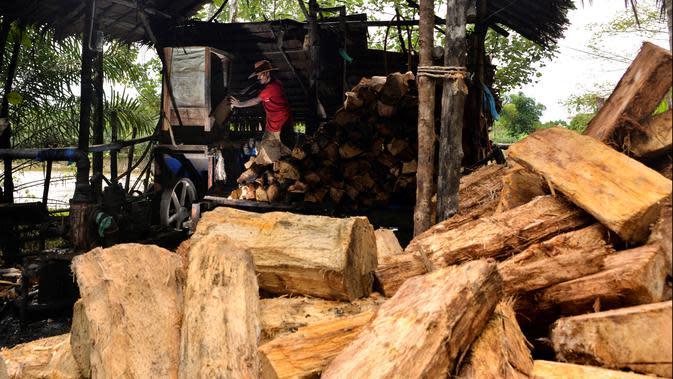Gambar pada 9 Februari 2020 menunjukkan pekerja menggiling batang pohon sagu menjadi tepung di sebuah desa di Meulaboh, provinsi Aceh. Tepung sagu adalah jenis tepung yang berasal dari pohon rumbia atau pohon aren, dan pohon jenis ini banyak ditemukan bagian timur. (CHAIDEER MAHYUDDIN/AFP)